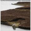 Thumbnail image for Spring 2014 NASSA News