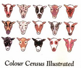 Color Census Book