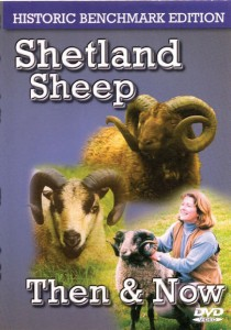 Shetland Sheep Then & Now DVD