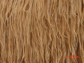Double-Coated Fleece