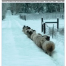 Thumbnail image for Winter 2016 NASSA News